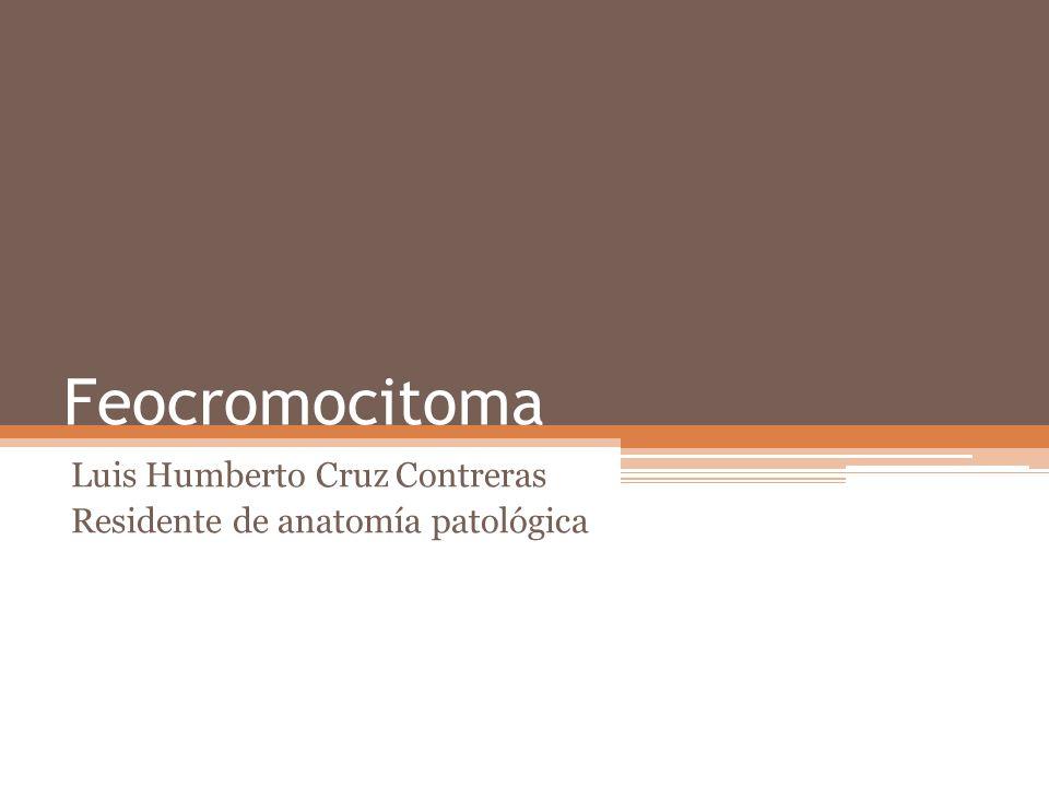 Feocromocitoma Luis Humberto Cruz Contreras Residente de anatomía patológica