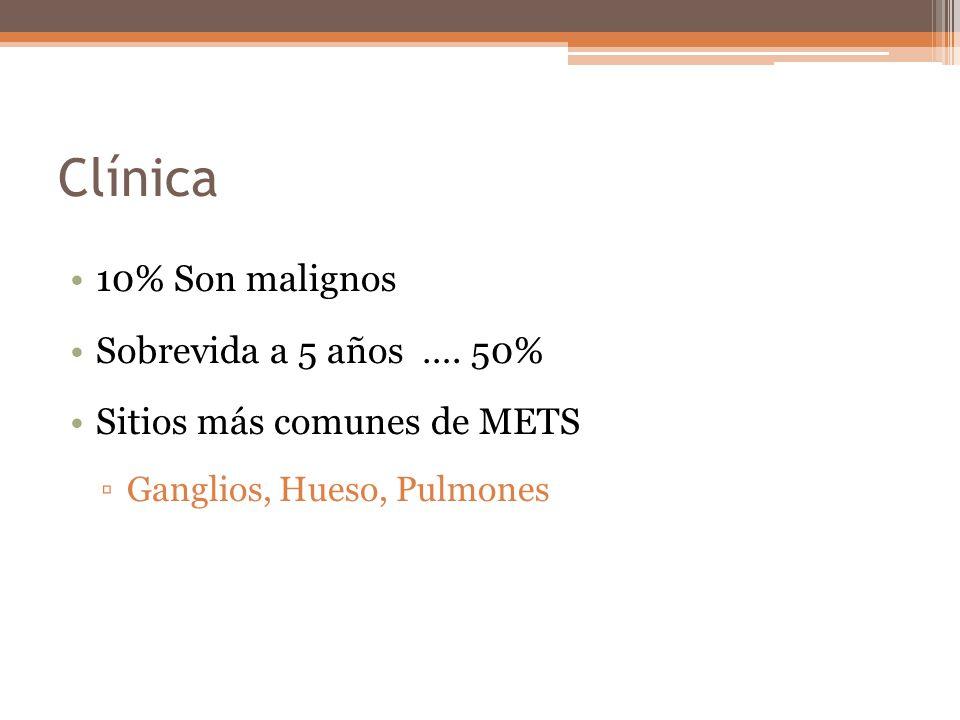 Clínica 10% Son malignos Sobrevida a 5 años …. 50% Sitios más comunes de METS Ganglios, Hueso, Pulmones