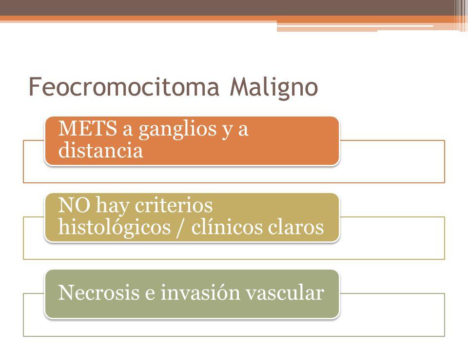 Feocromocitoma Maligno METS a ganglios y a distancia NO hay criterios histológicos / clínicos claros Necrosis e invasión vascular