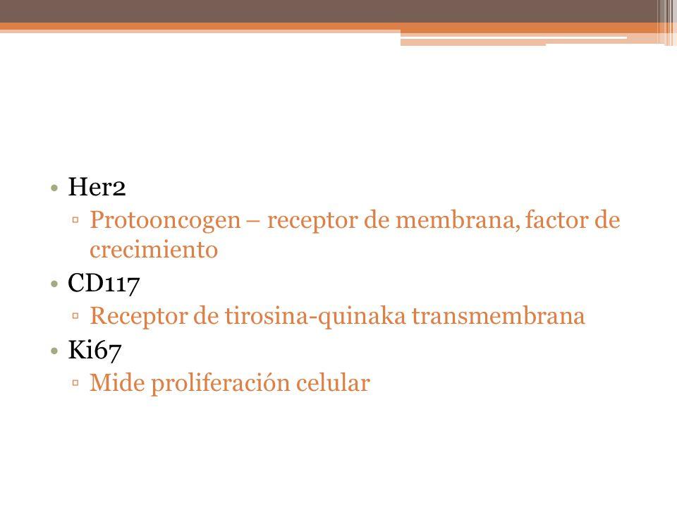 Her2 Protooncogen – receptor de membrana, factor de crecimiento CD117 Receptor de tirosina-quinaka transmembrana Ki67 Mide proliferación celular