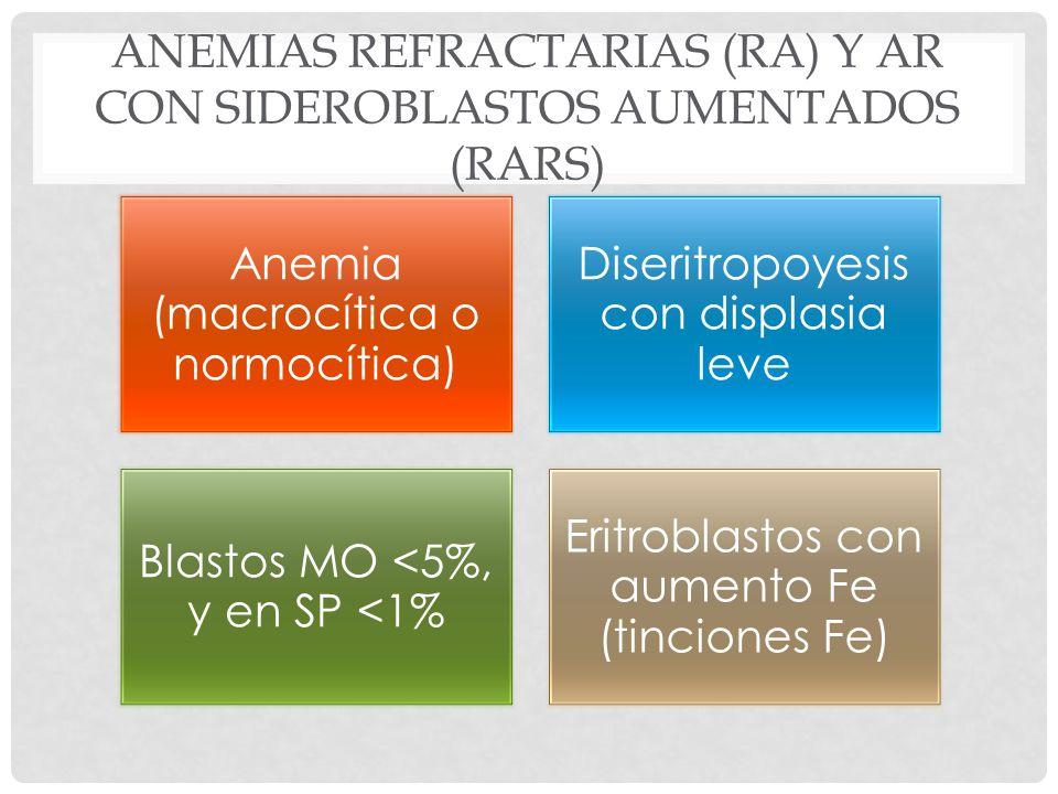 ANEMIAS REFRACTARIAS (RA) Y AR CON SIDEROBLASTOS AUMENTADOS (RARS) Anemia (macrocítica o normocítica) Diseritropoyesis con displasia leve Blastos MO <5%, y en SP <1% Eritroblastos con aumento Fe (tinciones Fe)
