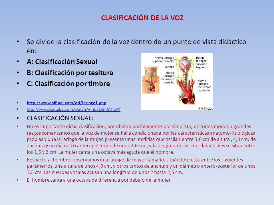 CLASIFICACIÓN DE LA VOZ Se divide la clasificación de la voz dentro de un punto de vista didáctico en: A: Clasificación Sexual B: Clasificación por te