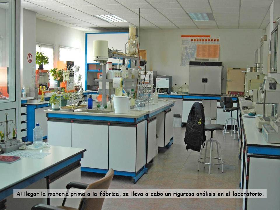 Al llegar la materia prima a la fábrica, se lleva a cabo un riguroso análisis en el laboratorio.