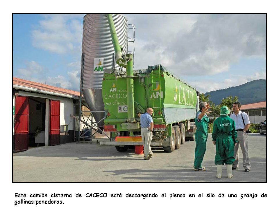 Este camión cisterna de CACECO está descargando el pienso en el silo de una granja de gallinas ponedoras.