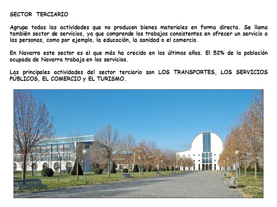 SECTOR TERCIARIO Agrupa todas las actividades que no producen bienes materiales en forma directa.