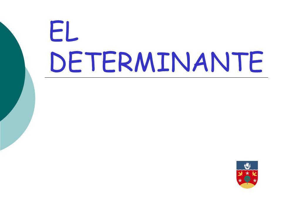 EL DETERMINANTE