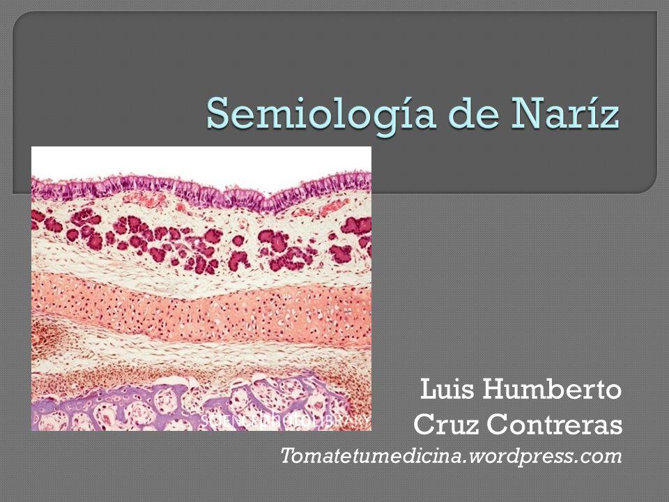 Hiposmia – Casi siempre pasajera y acompaña a cuadros infecciosos Hiperosmia – raro, enf. basedow