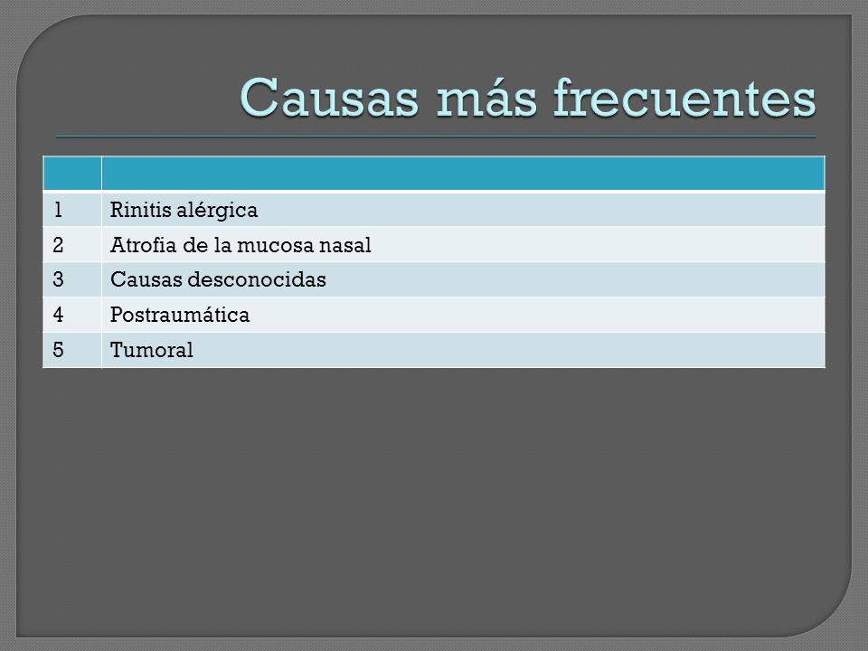 1Rinitis alérgica 2Atrofia de la mucosa nasal 3Causas desconocidas 4Postraumática 5Tumoral