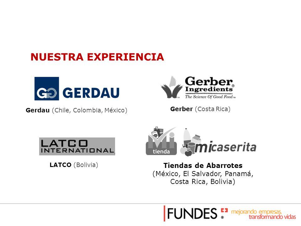 NUESTRA EXPERIENCIA Gerdau (Chile, Colombia, México) Gerber (Costa Rica) LATCO (Bolivia) Tiendas de Abarrotes (México, El Salvador, Panamá, Costa Rica