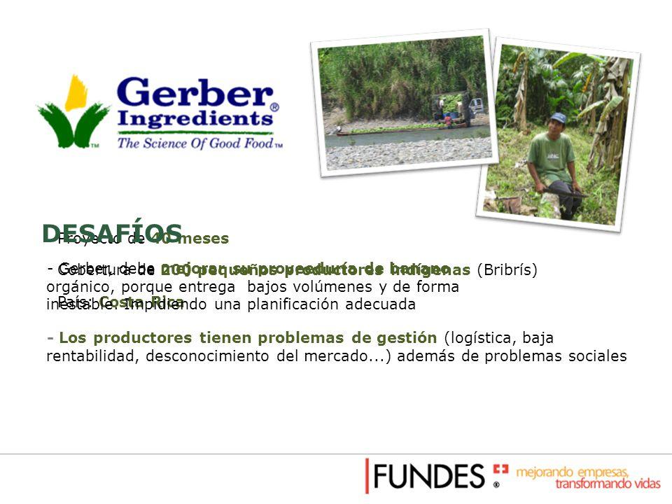 Proyecto de 40 meses Cobertura de 200 pequeños productores indígenas (Bribrís) País: Costa Rica DESAFÍOS - Gerber, debe mejorar su proveeduría de bana