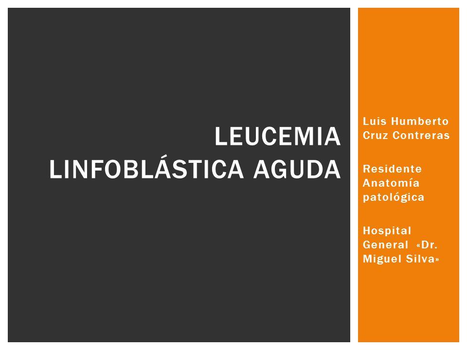 Luis Humberto Cruz Contreras Residente Anatomía patológica Hospital General «Dr. Miguel Silva» LEUCEMIA LINFOBLÁSTICA AGUDA