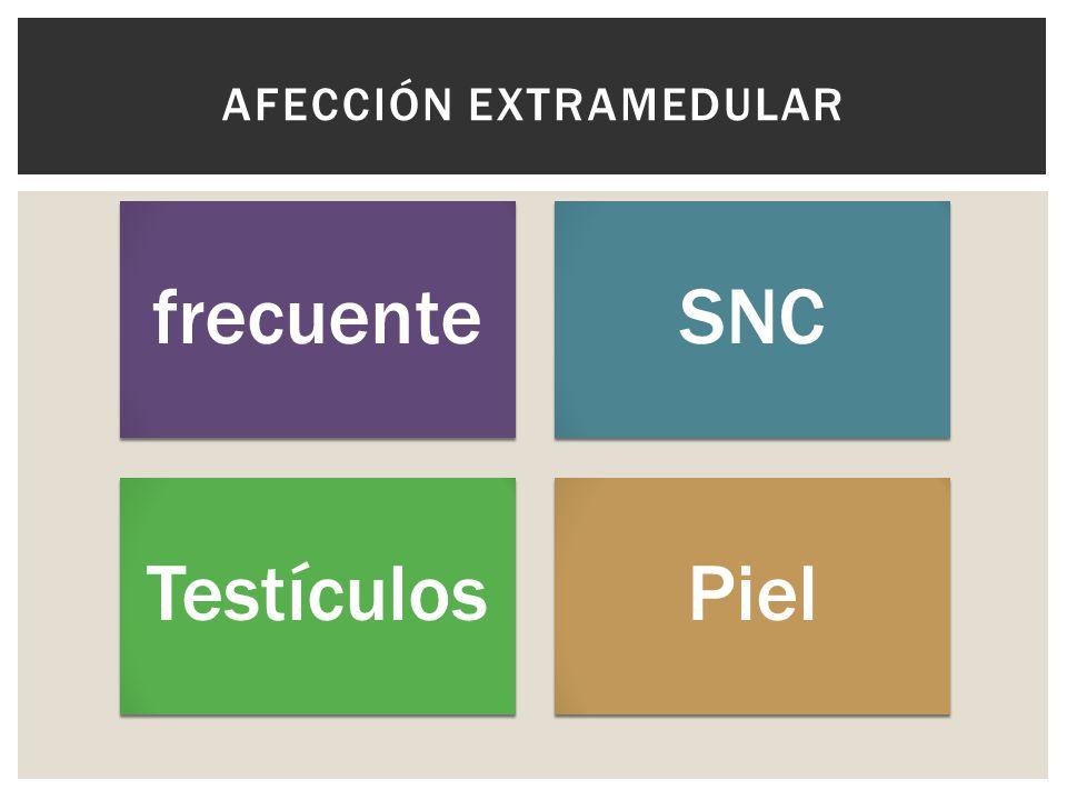 frecuenteSNC TestículosPiel AFECCIÓN EXTRAMEDULAR