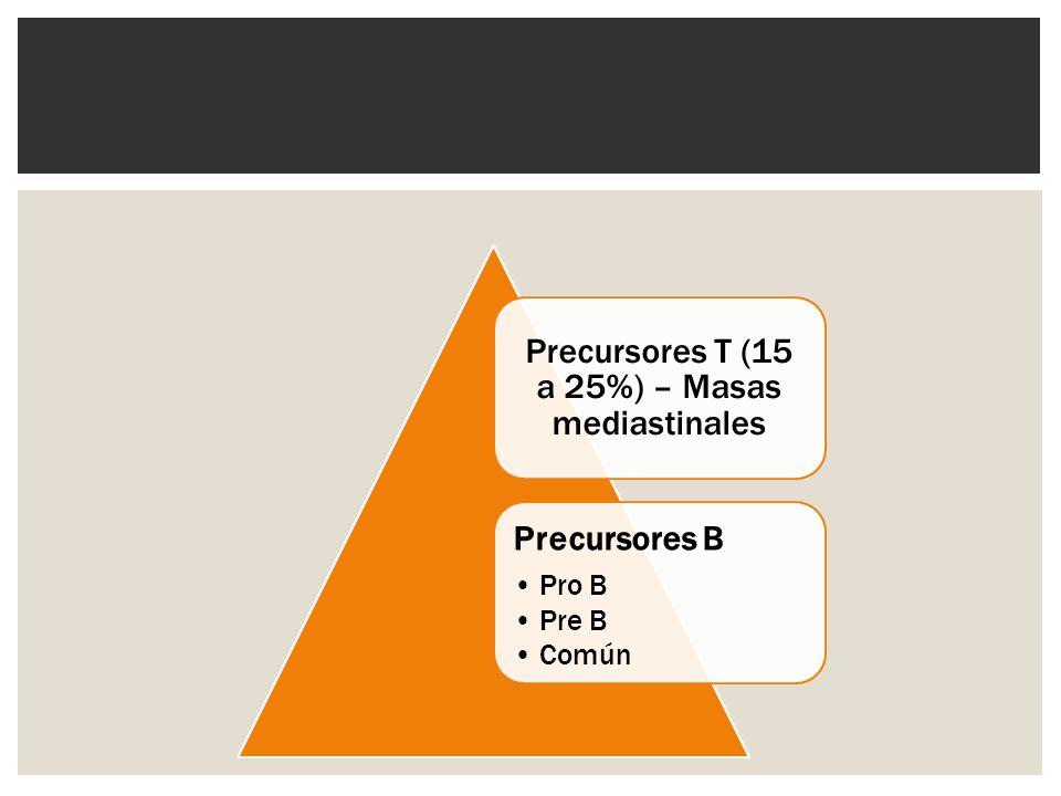 Precursores T (15 a 25%) – Masas mediastinales Precursores B Pro B Pre B Común