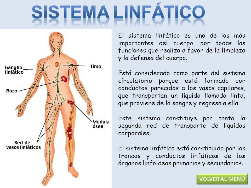 El sistema inmunológico es aquel conjunto de estructuras y procesos biológicos en el interior de un organismo que le protege contra enfermedades identificando y matando células patógenas y cancerosas.