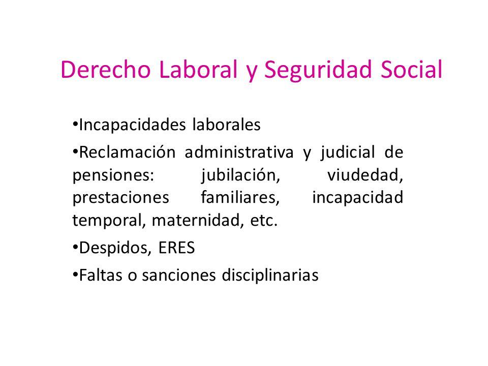 Derecho Laboral y Seguridad Social Incapacidades laborales Reclamación administrativa y judicial de pensiones: jubilación, viudedad, prestaciones fami