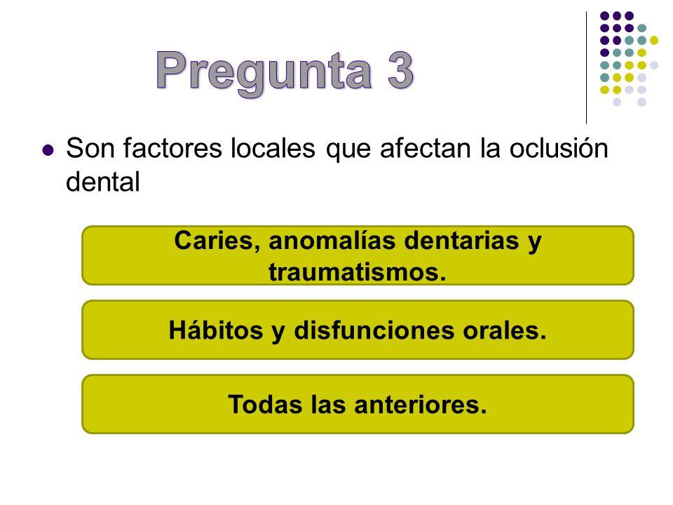 Son factores locales que afectan la oclusión dental Caries, anomalías dentarias y traumatismos. Hábitos y disfunciones orales. Todas las anteriores.