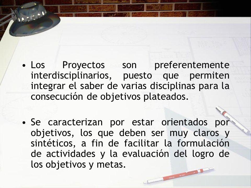 Los Proyectos son preferentemente interdisciplinarios, puesto que permiten integrar el saber de varias disciplinas para la consecución de objetivos pl