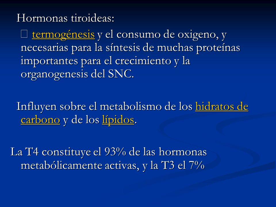 Hormonas tiroideas: Hormonas tiroideas: termogénesis y el consumo de oxigeno, y necesarias para la síntesis de muchas proteínas importantes para el crecimiento y la organogenesis del SNC.