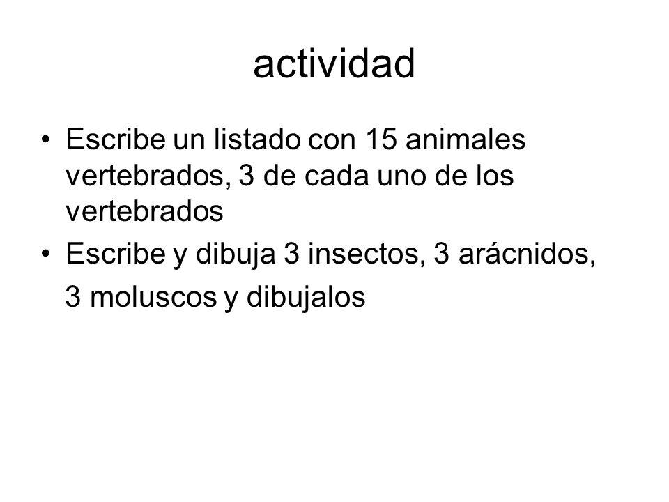 actividad Escribe un listado con 15 animales vertebrados, 3 de cada uno de los vertebrados Escribe y dibuja 3 insectos, 3 arácnidos, 3 moluscos y dibu