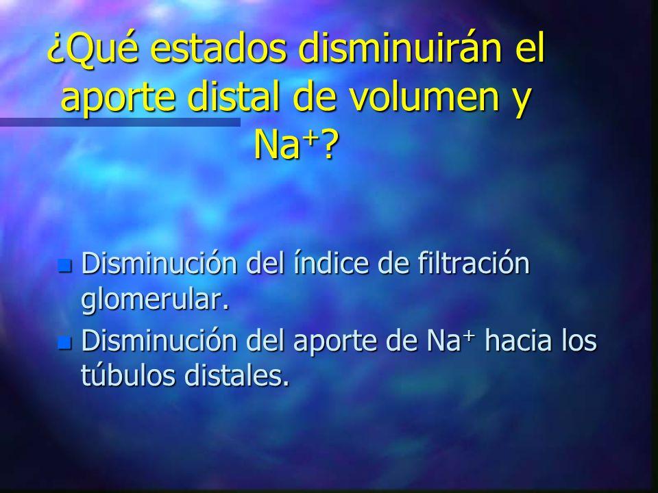 ¿Qué estados disminuirán el aporte distal de volumen y Na + ? n Disminución del índice de filtración glomerular. n Disminución del aporte de Na + haci
