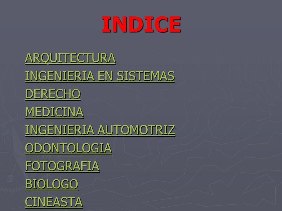 INDICE ARQUITECTURA INGENIERIA EN SISTEMAS INGENIERIA EN SISTEMAS DERECHO MEDICINA INGENIERIA AUTOMOTRIZ INGENIERIA AUTOMOTRIZ ODONTOLOGIA FOTOGRAFIA