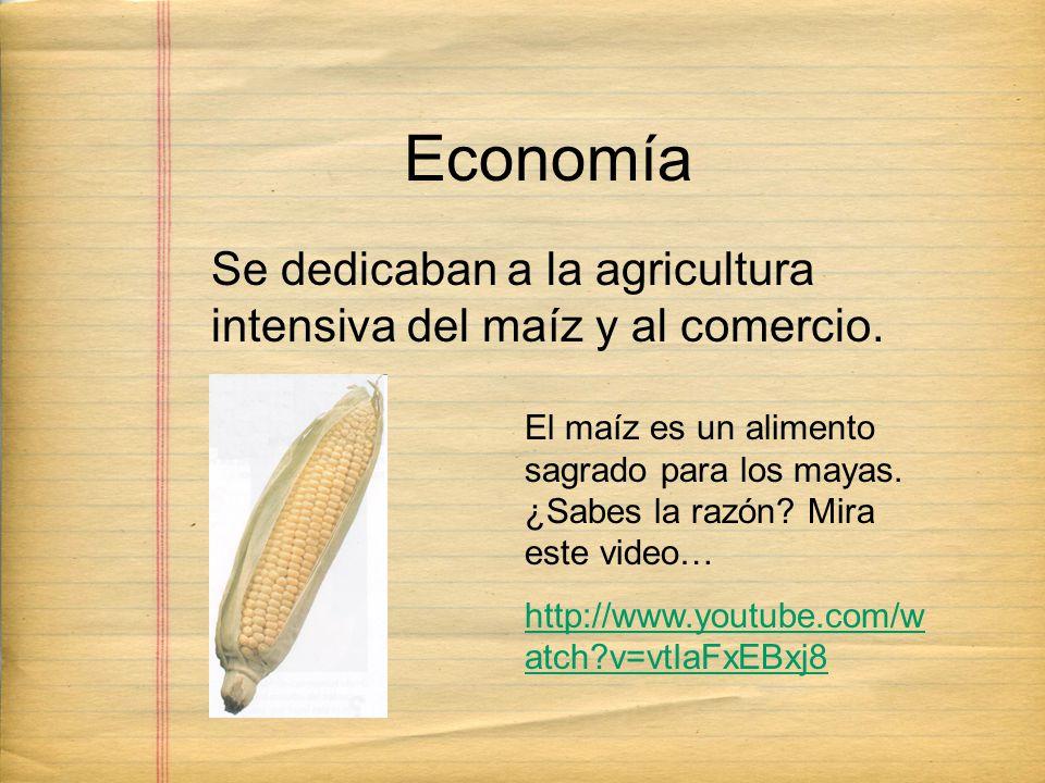 Se dedicaban a la agricultura intensiva del maíz y al comercio. Economía El maíz es un alimento sagrado para los mayas. ¿Sabes la razón? Mira este vid