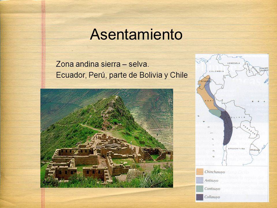 Zona andina sierra – selva. Ecuador, Perú, parte de Bolivia y Chile Asentamiento