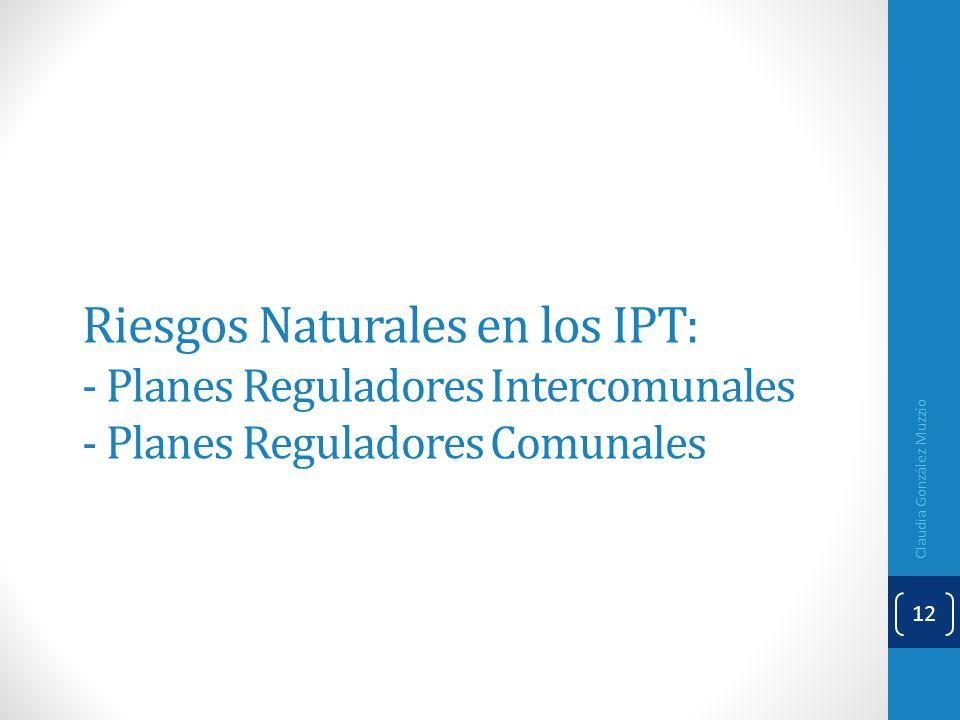 Riesgos Naturales en los IPT: - Planes Reguladores Intercomunales - Planes Reguladores Comunales Claudia González Muzzio 12