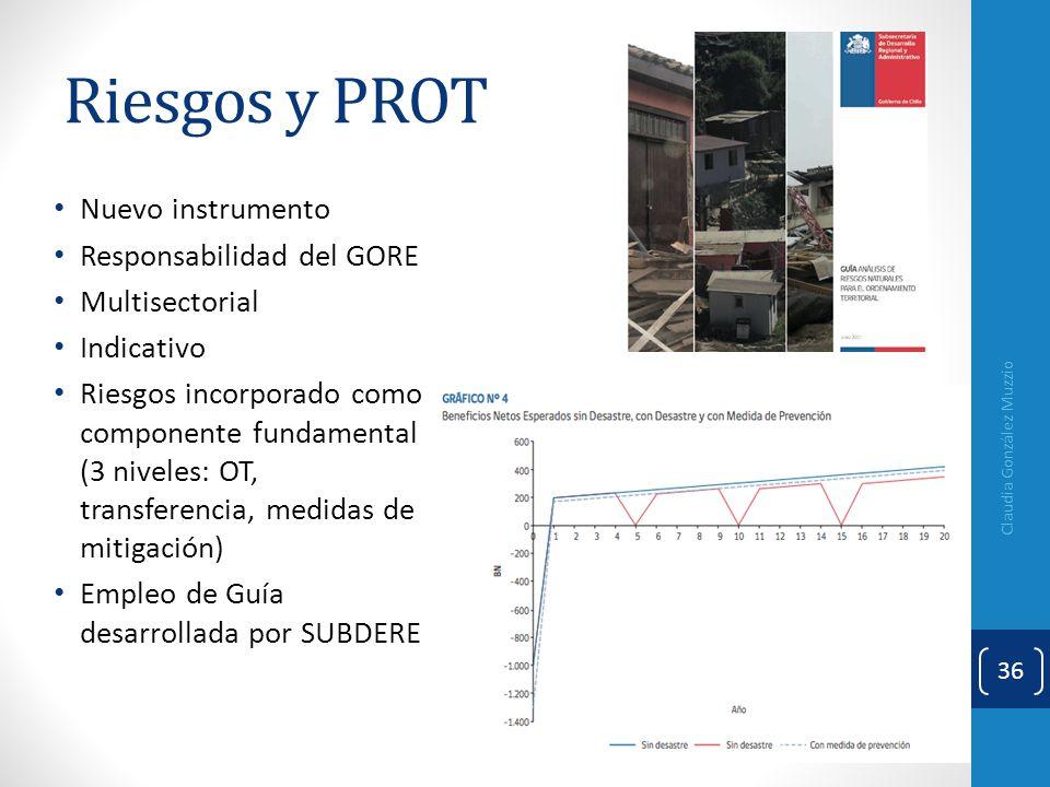 Riesgos y PROT Claudia González Muzzio 36 Nuevo instrumento Responsabilidad del GORE Multisectorial Indicativo Riesgos incorporado como componente fun
