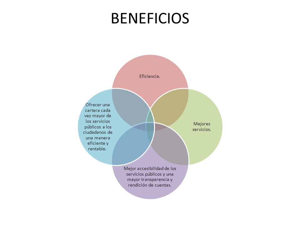 BENEFICIOS Eficiencia. Mejores servicios. Mejor accesibilidad de los servicios públicos y una mayor transparencia y rendición de cuentas. Ofrecer una