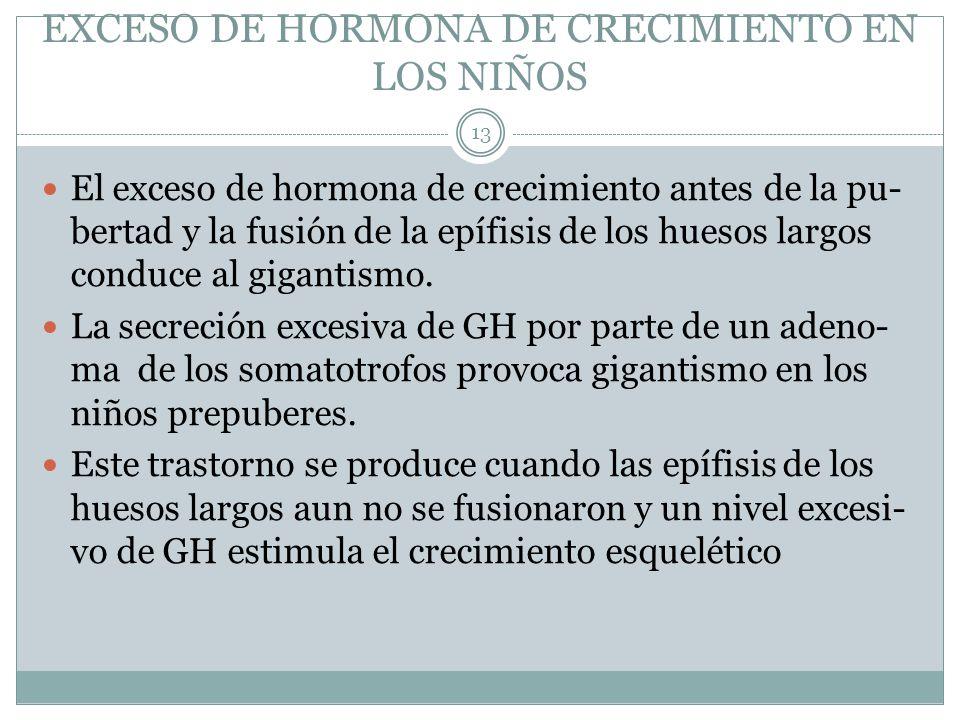 EXCESO DE HORMONA DE CRECIMIENTO EN LOS NIÑOS El exceso de hormona de crecimiento antes de la pu- bertad y la fusión de la epífisis de los huesos larg