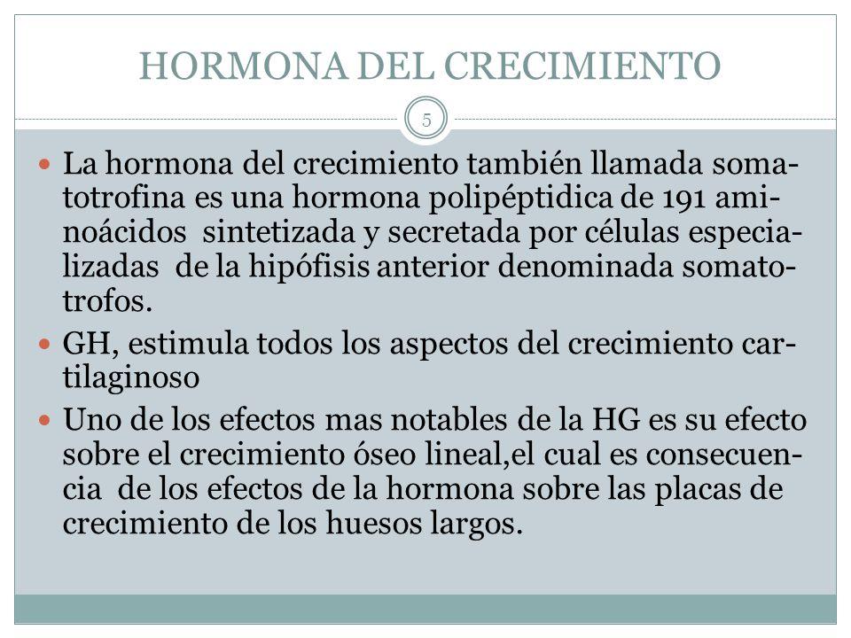 HORMONA DEL CRECIMIENTO La hormona del crecimiento también llamada soma- totrofina es una hormona polipéptidica de 191 ami- noácidos sintetizada y sec