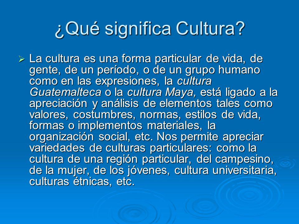 ¿Qué significa Cultura.
