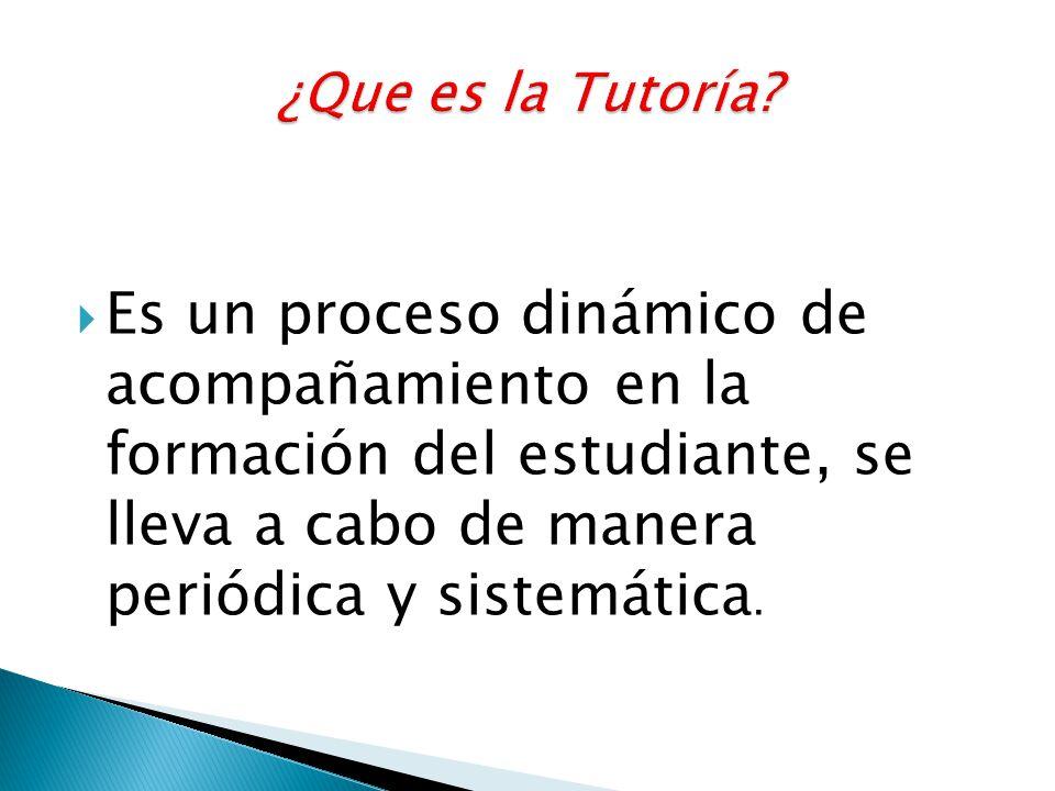 Es un proceso dinámico de acompañamiento en la formación del estudiante, se lleva a cabo de manera periódica y sistemática.