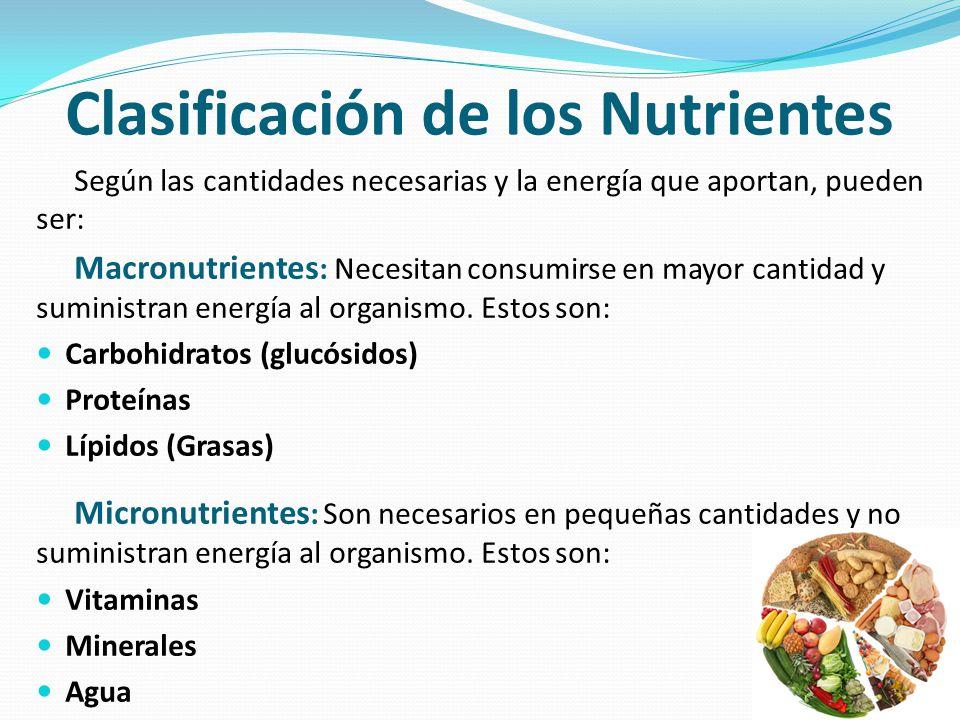 Clasificación de los Nutrientes Según las cantidades necesarias y la energía que aportan, pueden ser: Macronutrientes : Necesitan consumirse en mayor