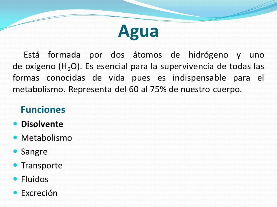 Agua Está formada por dos átomos de hidrógeno y uno de oxígeno (H 2 O). Es esencial para la supervivencia de todas las formas conocidas de vida pues e