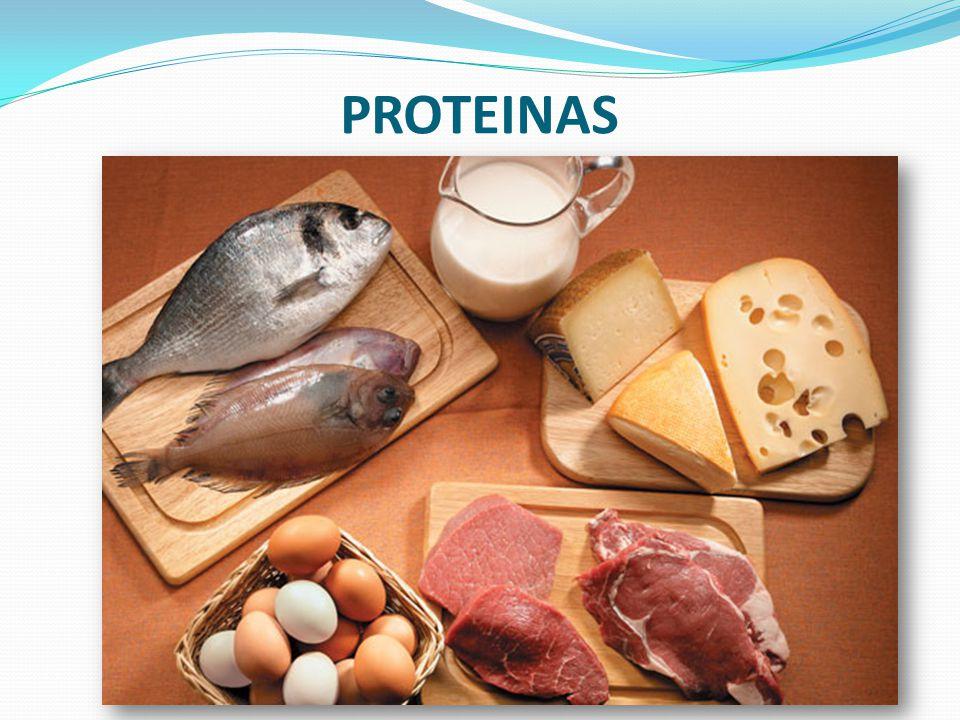 Proteínas Están compuestas por cadenas de aminoácidos.