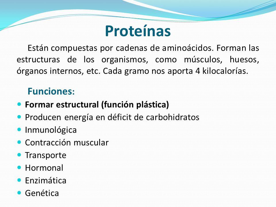 Clasificación de las Proteínas Completas: Son las que contiene todos los aminoácidos esenciales en cantidad suficiente y en la proporción adecuada.