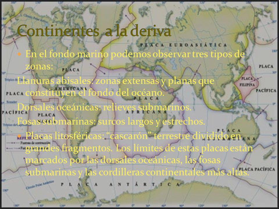 En el fondo marino podemos observar tres tipos de zonas: Llanuras abisales: zonas extensas y planas que constituyen el fondo del océano. Dorsales oceá