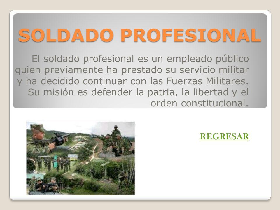 SOLDADO PROFESIONAL El soldado profesional es un empleado público quien previamente ha prestado su servicio militar y ha decidido continuar con las Fu