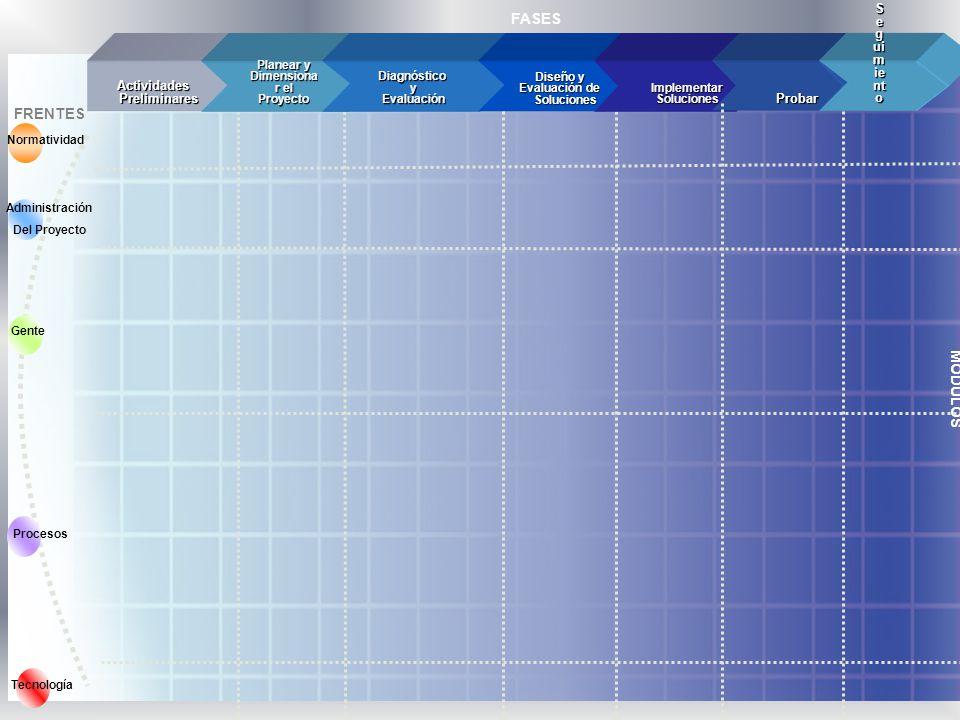 MÓDULOS Gente FRENTES Procesos Normatividad Tecnología FASES Actividades Preliminares Planear y Dimensiona r el Proyecto Diagnóstico Diagnóstico y Eva