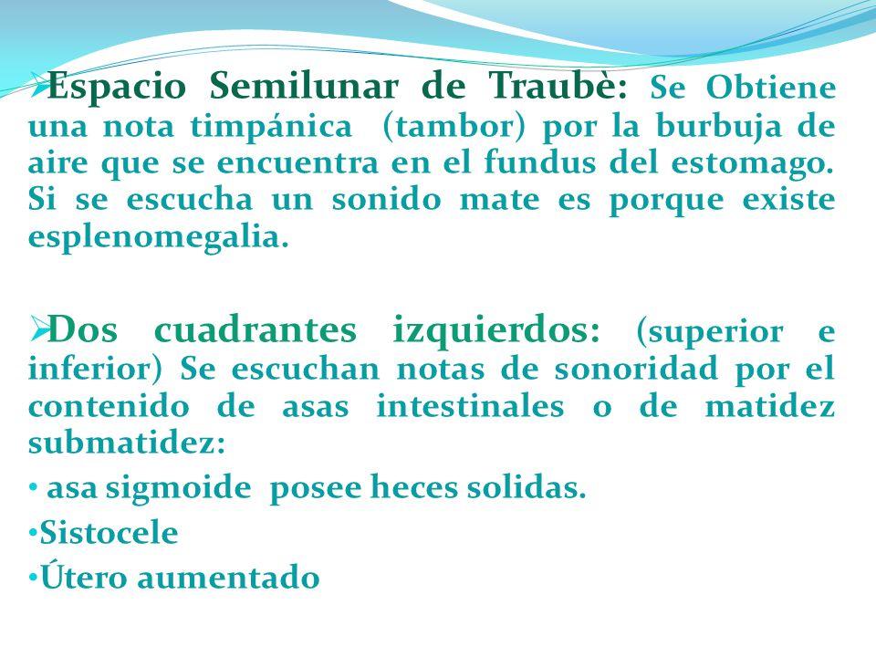 Espacio Semilunar de Traubè: Se Obtiene una nota timpánica (tambor) por la burbuja de aire que se encuentra en el fundus del estomago. Si se escucha u