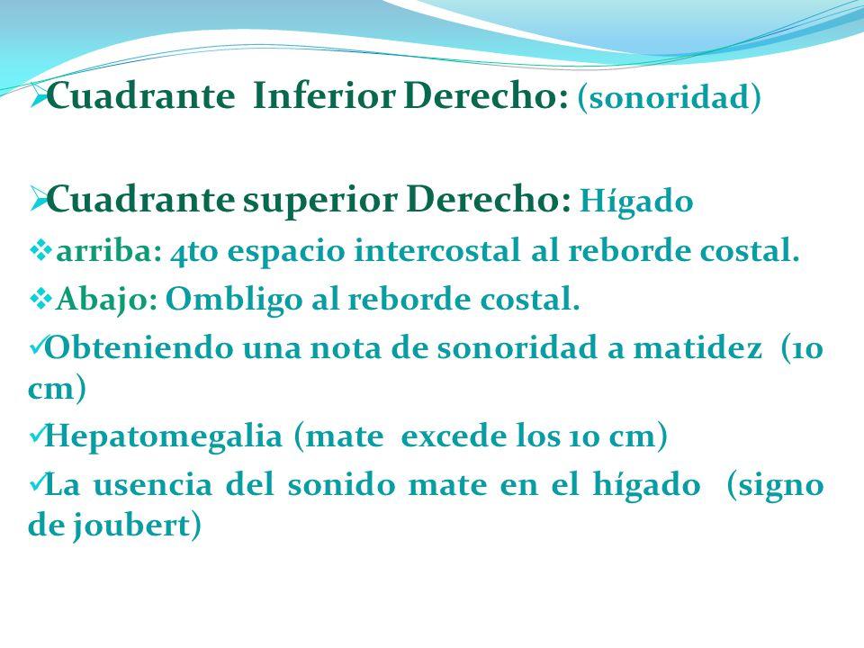 Cuadrante Inferior Derecho: (sonoridad) Cuadrante superior Derecho: Hígado arriba: 4to espacio intercostal al reborde costal. Abajo: Ombligo al rebord