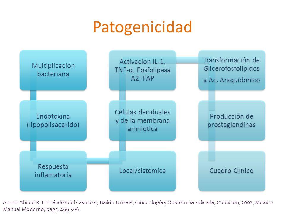 Patogenicidad Multiplicación bacteriana Endotoxina (lipopolisacarido) Respuesta inflamatoria Local/sistémica Células deciduales y de la membrana amniótica Activación IL-1, TNF- α, Fosfolipasa A2, FAP Transformación de Glicerofosfolípidos a Ac.