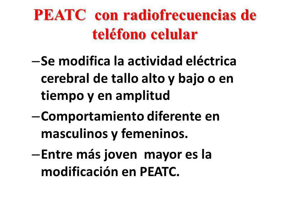 PEATC con radiofrecuencias de teléfono celular – Se modifica la actividad eléctrica cerebral de tallo alto y bajo o en tiempo y en amplitud – Comporta