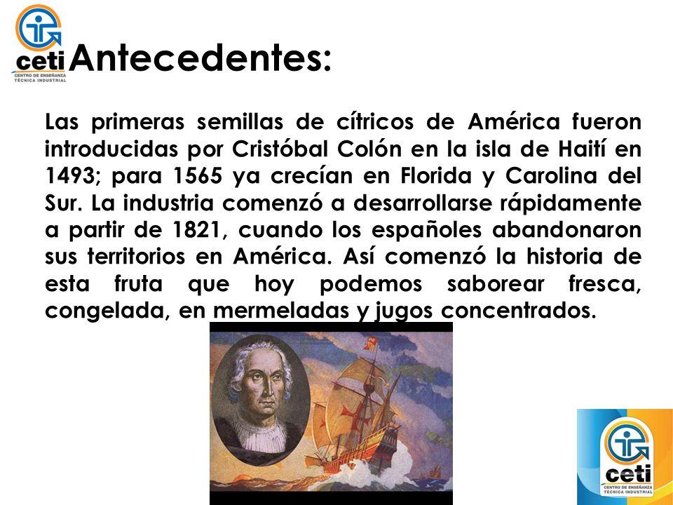 Antecedentes: Las primeras semillas de cítricos de América fueron introducidas por Cristóbal Colón en la isla de Haití en 1493; para 1565 ya crecían e