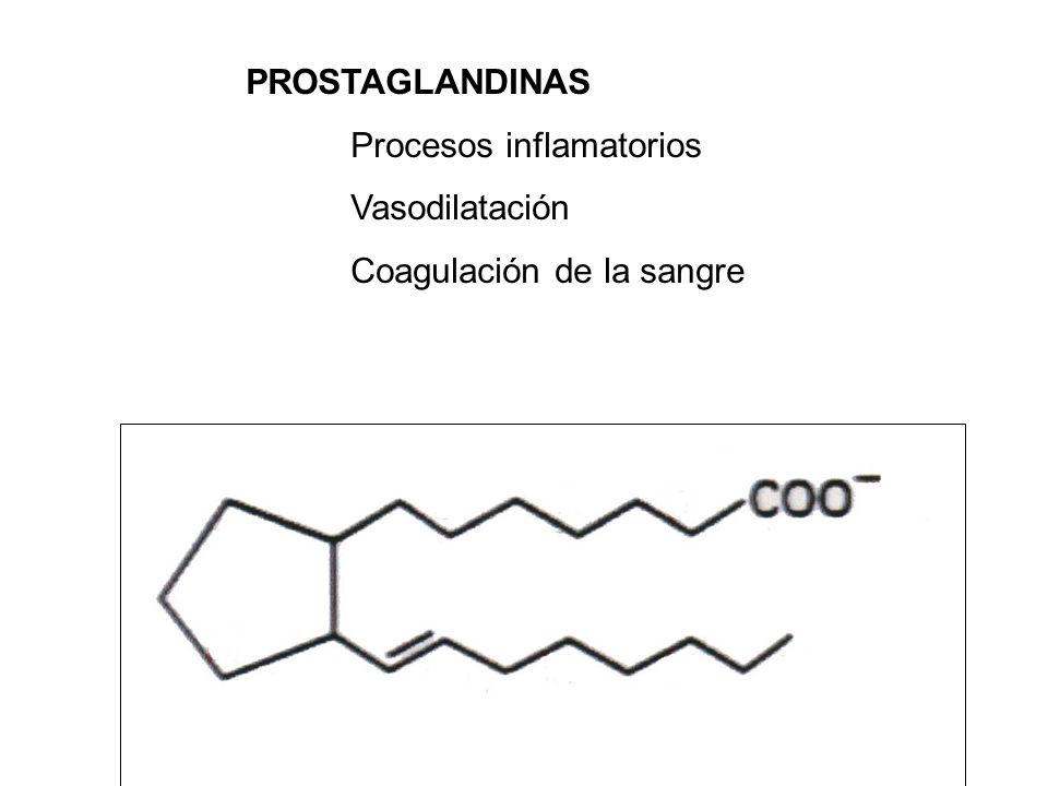 PROSTAGLANDINAS Procesos inflamatorios Vasodilatación Coagulación de la sangre