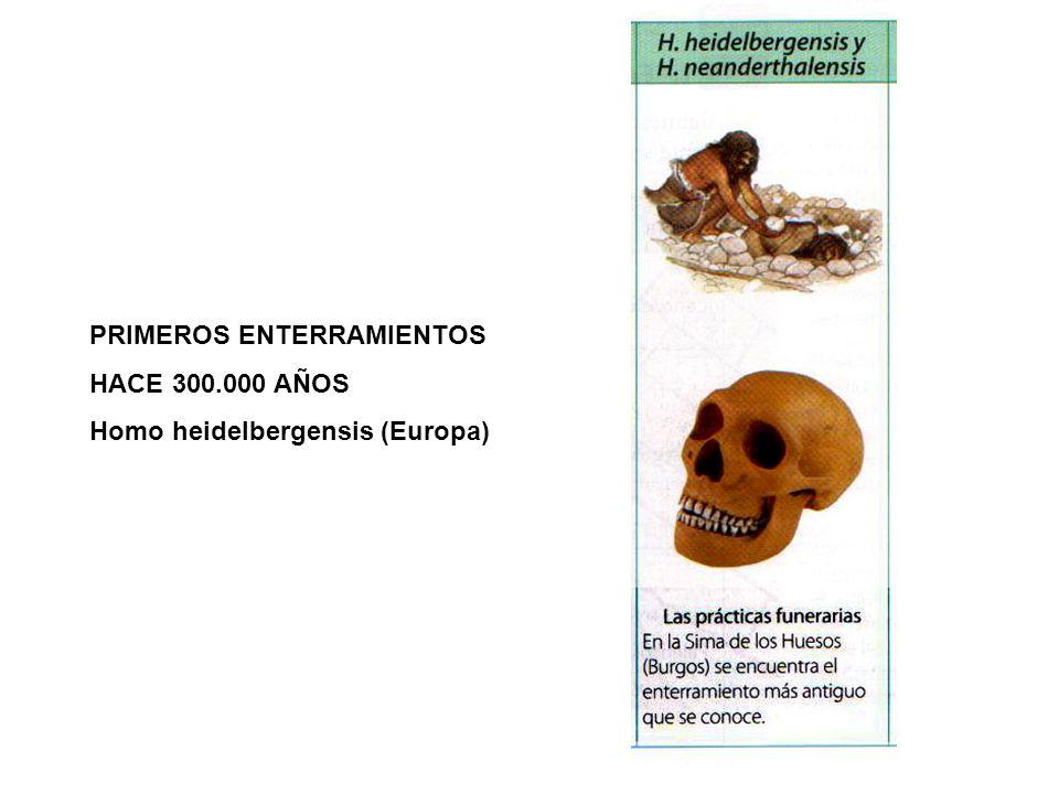 PRIMEROS ENTERRAMIENTOS HACE 300.000 AÑOS Homo heidelbergensis (Europa)