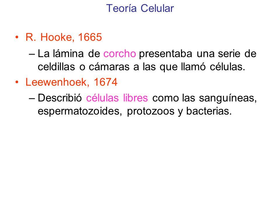 Teoría Celular R.
