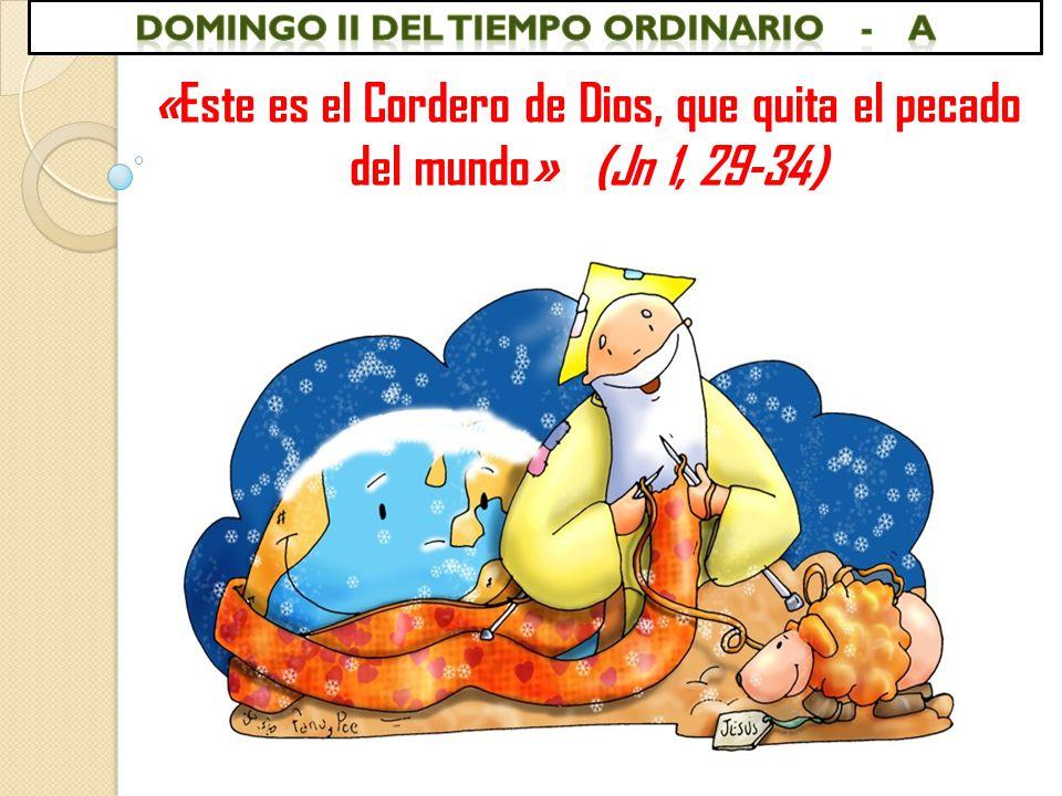 «Este es el Cordero de Dios, que quita el pecado del mundo» (Jn 1, 29-34)